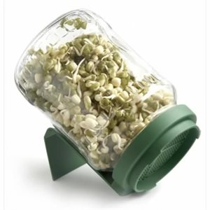 BioSnacky Glass Sprouting Jar