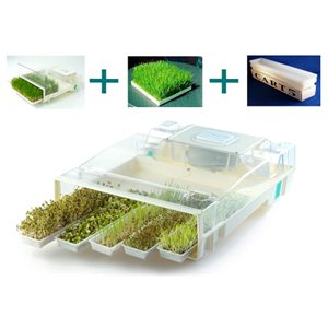EasyGreen Germoir Automatique
