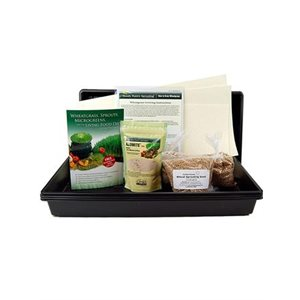 Wheatgrass Soil-less Growing Kit